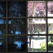 Умные окна «RavenWindow» фото