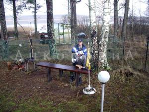 дача в Ленобласти с зимним садом