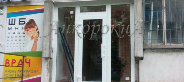 алюминиевые двери Спб