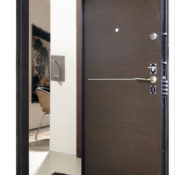 Стальная дверь Гранит Т5 в СПб фото