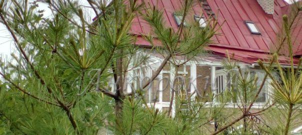 остекление в поселке Невская Дубровка проведал фото2